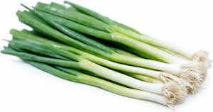 Green Onions Fresh 1/each