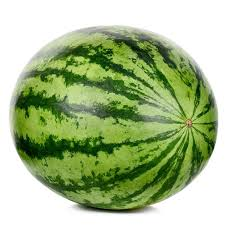 Seedless Watermelon 1/each