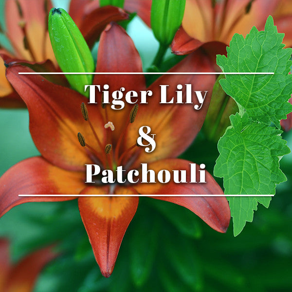 Tiger lily & Patchouli
