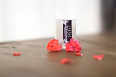 Coconut Palm & Hibiscus / Votive Trio