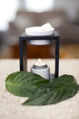 Coconut Palm & Hibiscus / Oil Burner