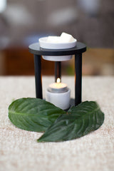 Fresh Linen/ Oil Burner