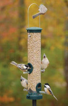 Load image into Gallery viewer, Seed Tube Feeder - Stick Perches - Spruce