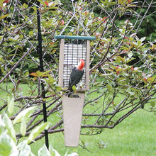 Load image into Gallery viewer, Recycled Suet Feeder - Double - Pileated Tail Prop