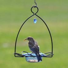 Load image into Gallery viewer, Bluebird Flower Feeder