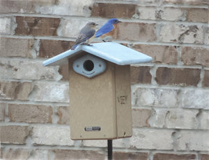 Ultimate Bluebird House - Recycled