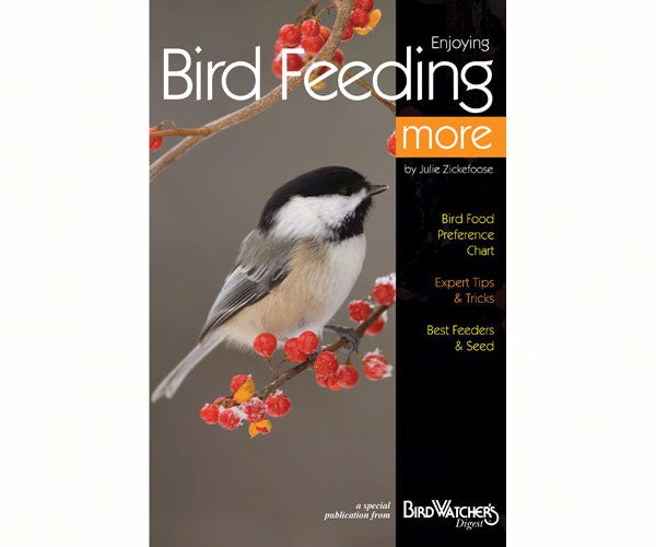 Enjoying Bird Feeding More - Julie Zickefoose
