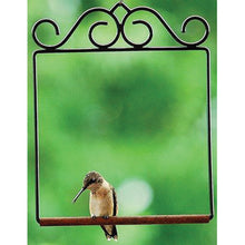 Load image into Gallery viewer, Hummingbird Swing