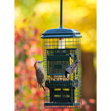 Load image into Gallery viewer, Squirrel Buster Suet Feeder