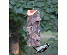 Load image into Gallery viewer, Suet Log Feeder - No Perches