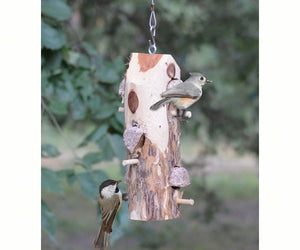 Suet Log Feeder - With Perches