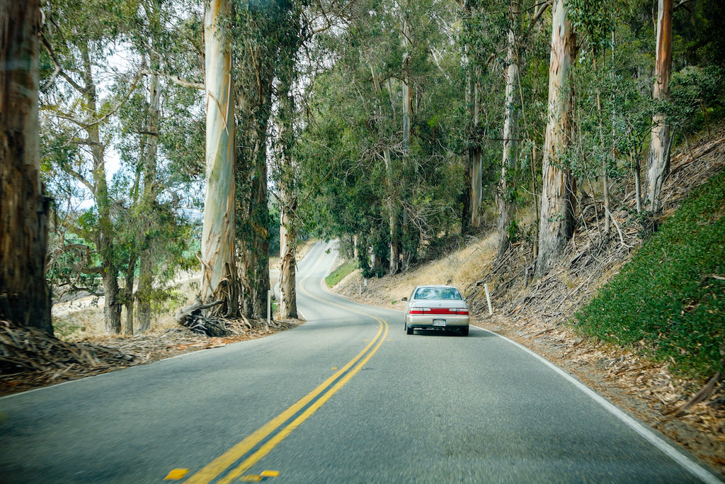 Tips to have in mind before starting a road trip