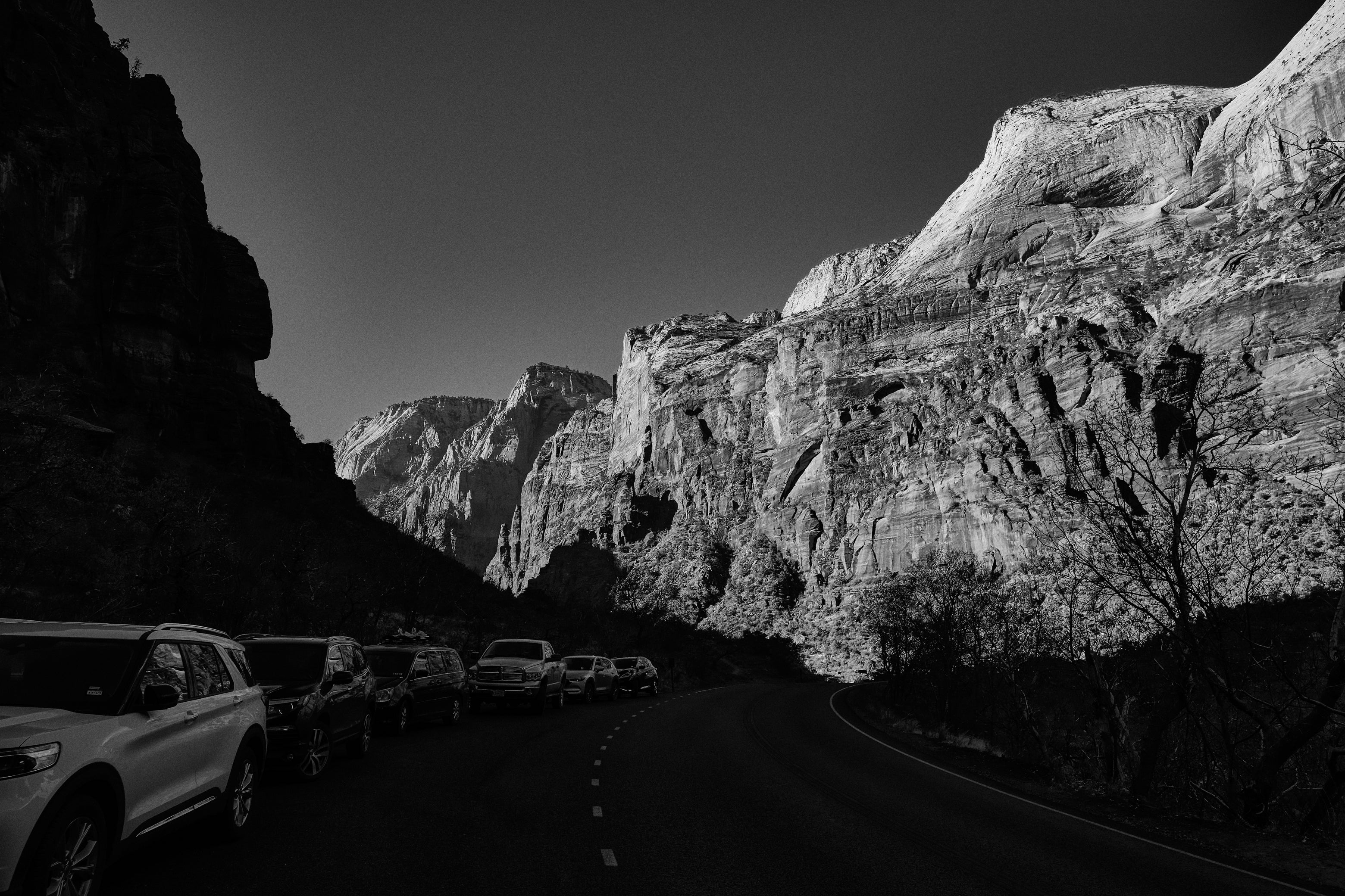 A Road In Zion National Park