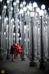Looking For Valentine, LACMA Museum, Los Angeles