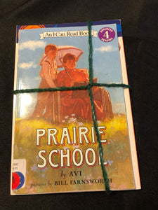 2 Level 4 Books- Prairie School & Ben Franklin and the Magic Squares