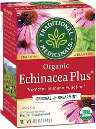 TRADITIONAL MEDICINALS ECHINACEA PLUS TEA 0.85 oz