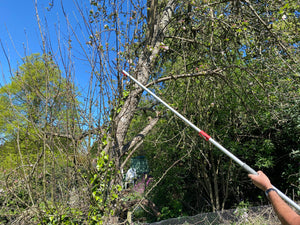 Long Reach Pruner