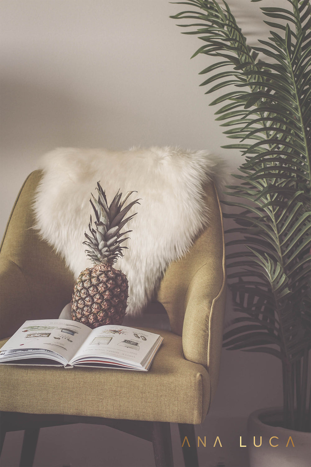 Pineapple Reads Art by Ana Luca