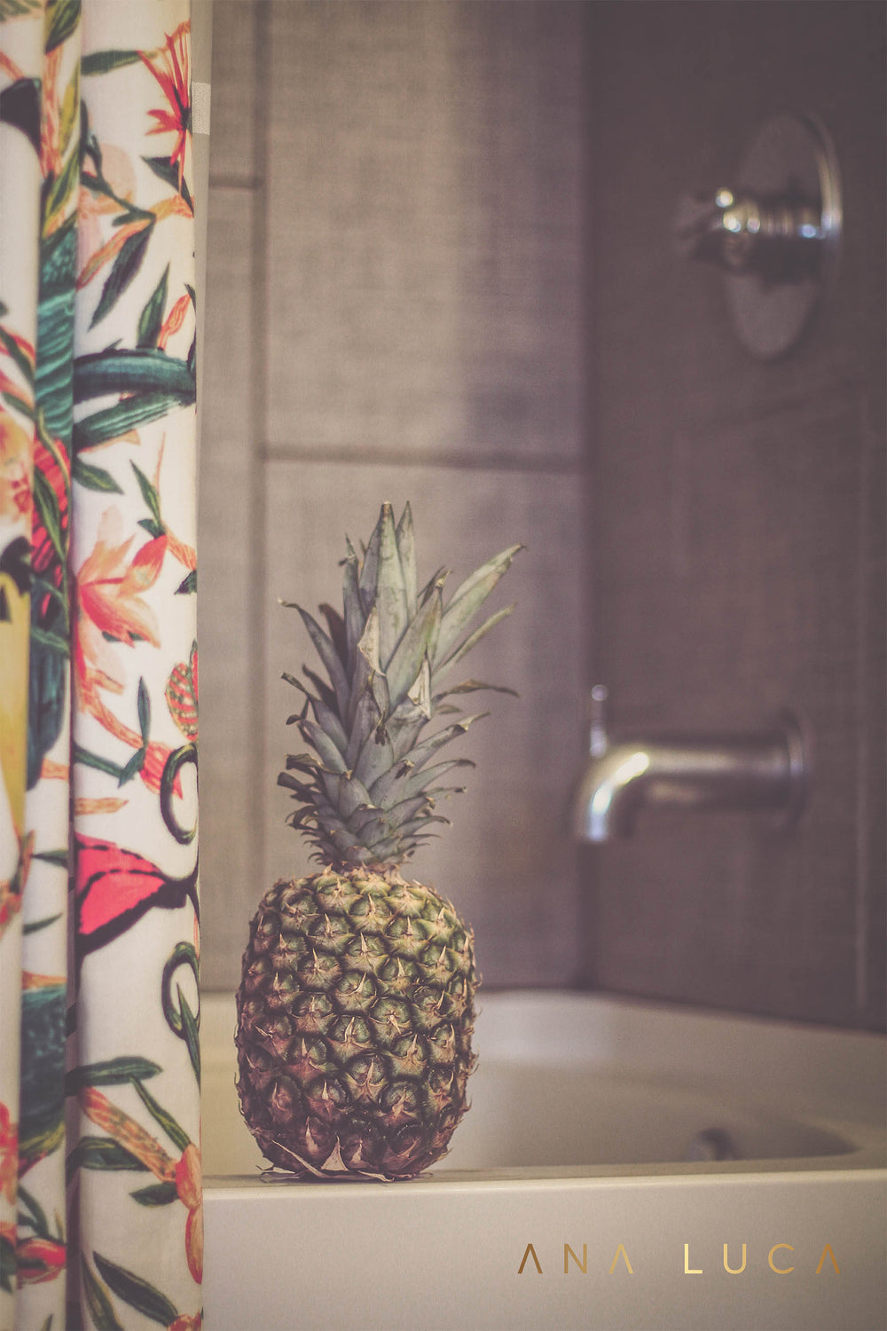 Pineapple Showers Art by Ana Luca