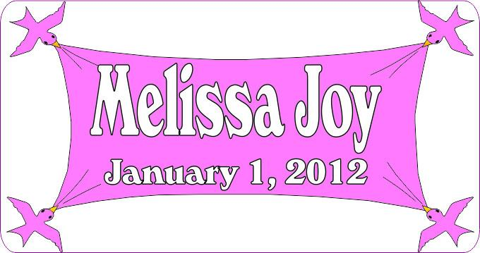 Baby Birthday Pink Custom Sign - Personalized - Fun Sign Factory