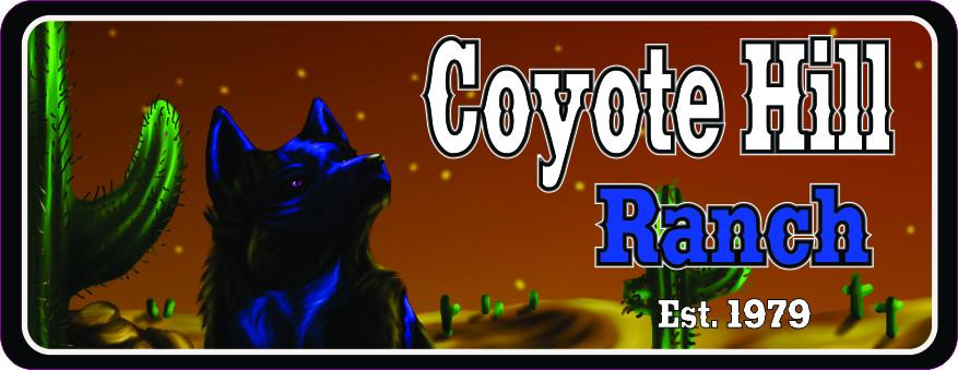 Blue Coyote Personalized Ranch Sign with Cactus & Night Desert