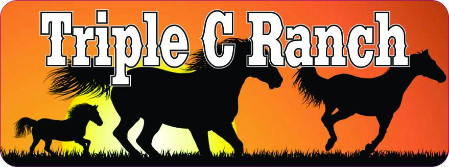 Horse Sunset Personalized Sign