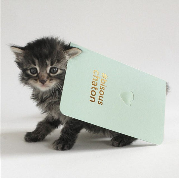 Carte Bisous Chaton