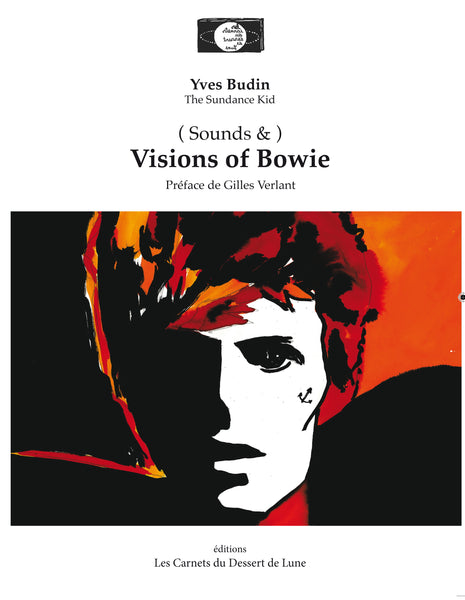 Visions of Bowie - Yves Budin