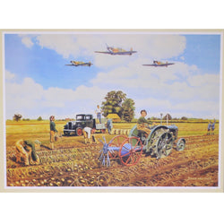 Dig For Victory: 500 Piece JR Puzzles Jigsaw Puzzle