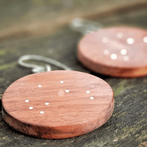 sme003 medium star map earrings 1