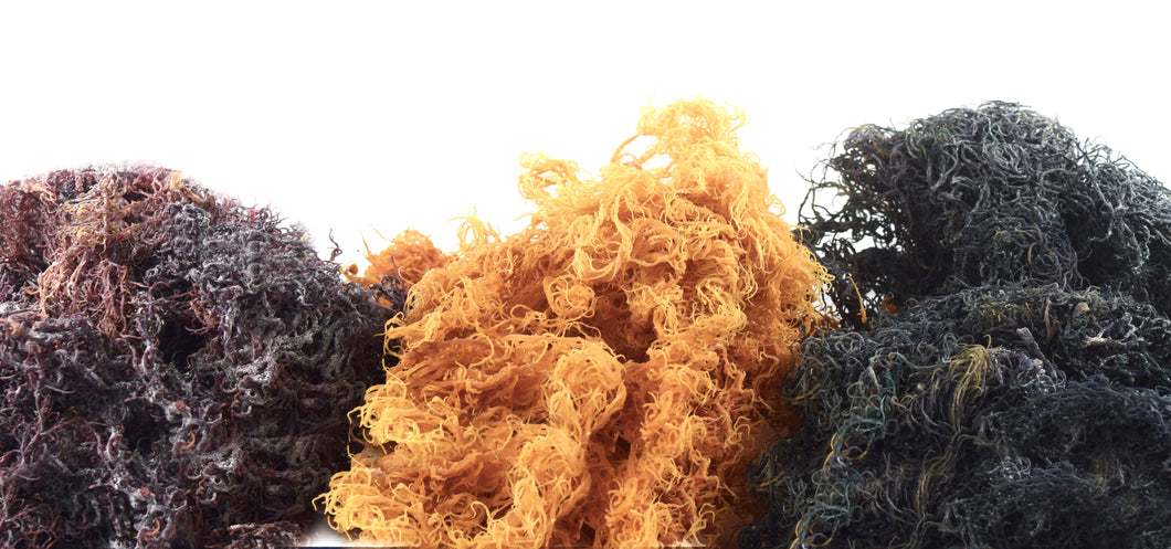 Raw Sea Moss (Gold, Purple, Blue/Green)