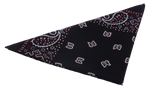 Load image into Gallery viewer, Bandana Paisley Black White