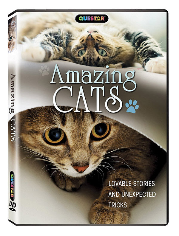 Amazing Cats DVD