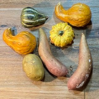 Vegetable 7 pc lot squash potato sweet potato yam home decor K4