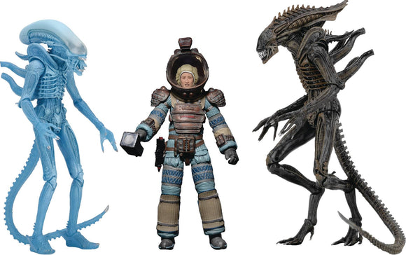 ALIENS 7IN SCALE AF SERIES 11 WARRIOR ALIEN