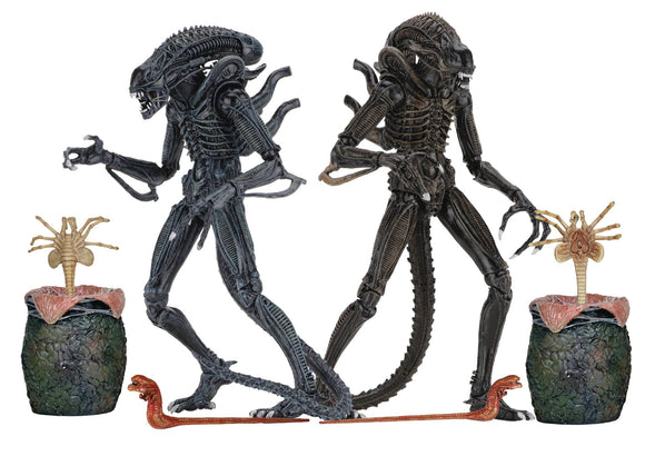ALIENS ULTIMATE ALIENS WARRIOR 7IN SCALE AF BLUE