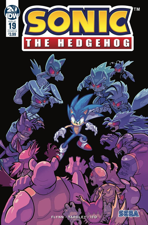 SONIC THE HEDGEHOG #19 CVR B WELLS GRAHAM