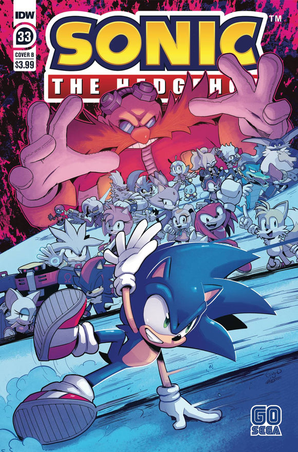 SONIC THE HEDGEHOG #33 CVR B DUTRIEX