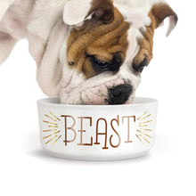 Load image into Gallery viewer, Fred beauty/beast mug and bowl set