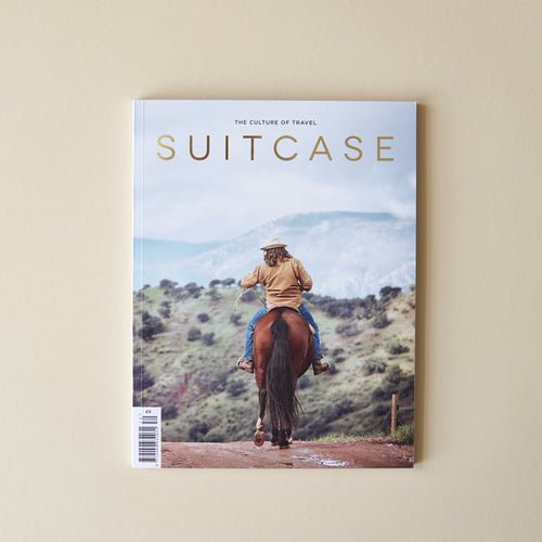 Suitcase 30 Cover