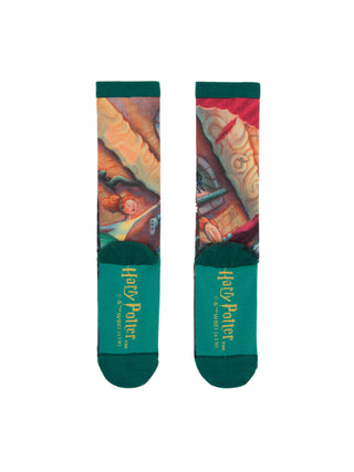 Harry Potter and the Chamber of Secrets socks