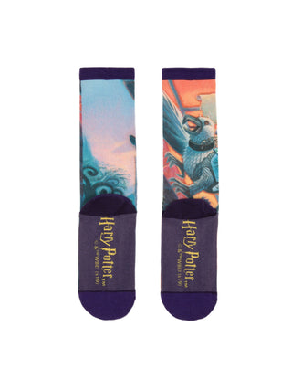 Harry Potter and the Prisoner of Azkaban socks