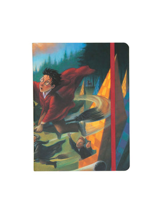 Quidditch Harry Potter journal