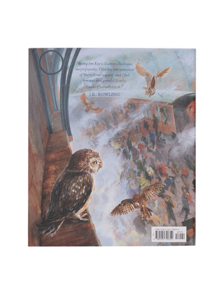 Harry Potter and the Sorcerer's Stone: The Illustrated Edition book
