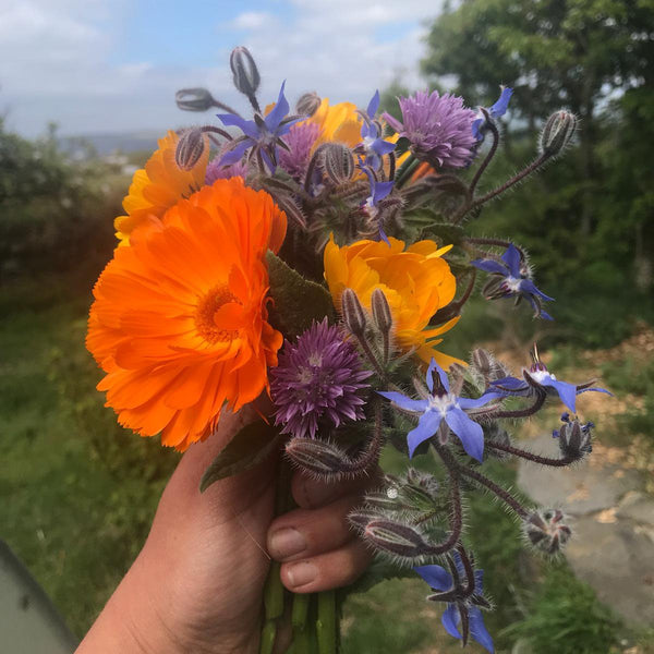Bouquet of Edible Flowers
