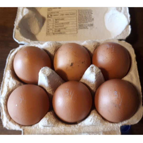 Hen Eggs from organic-fed hens (Box of 6)