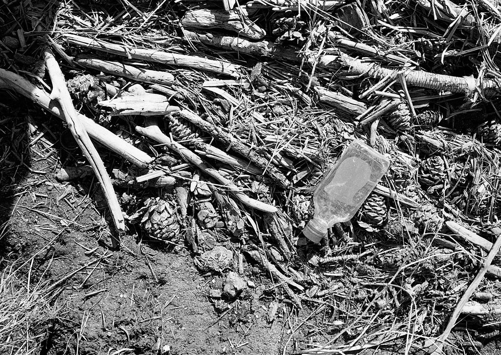 Film photo by Katie Lobodzinski of a littered bottle laying on driftwood in Estes Park