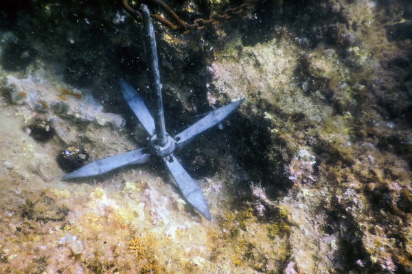 Anchor in coral reef