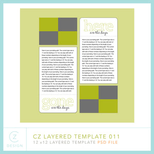 CZ Layered Template 011