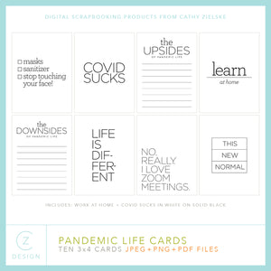 Pandemic Life Pocket Cards